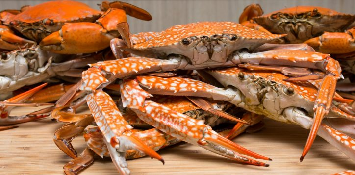 blue-crab-promotion-novotel-silom-1-2