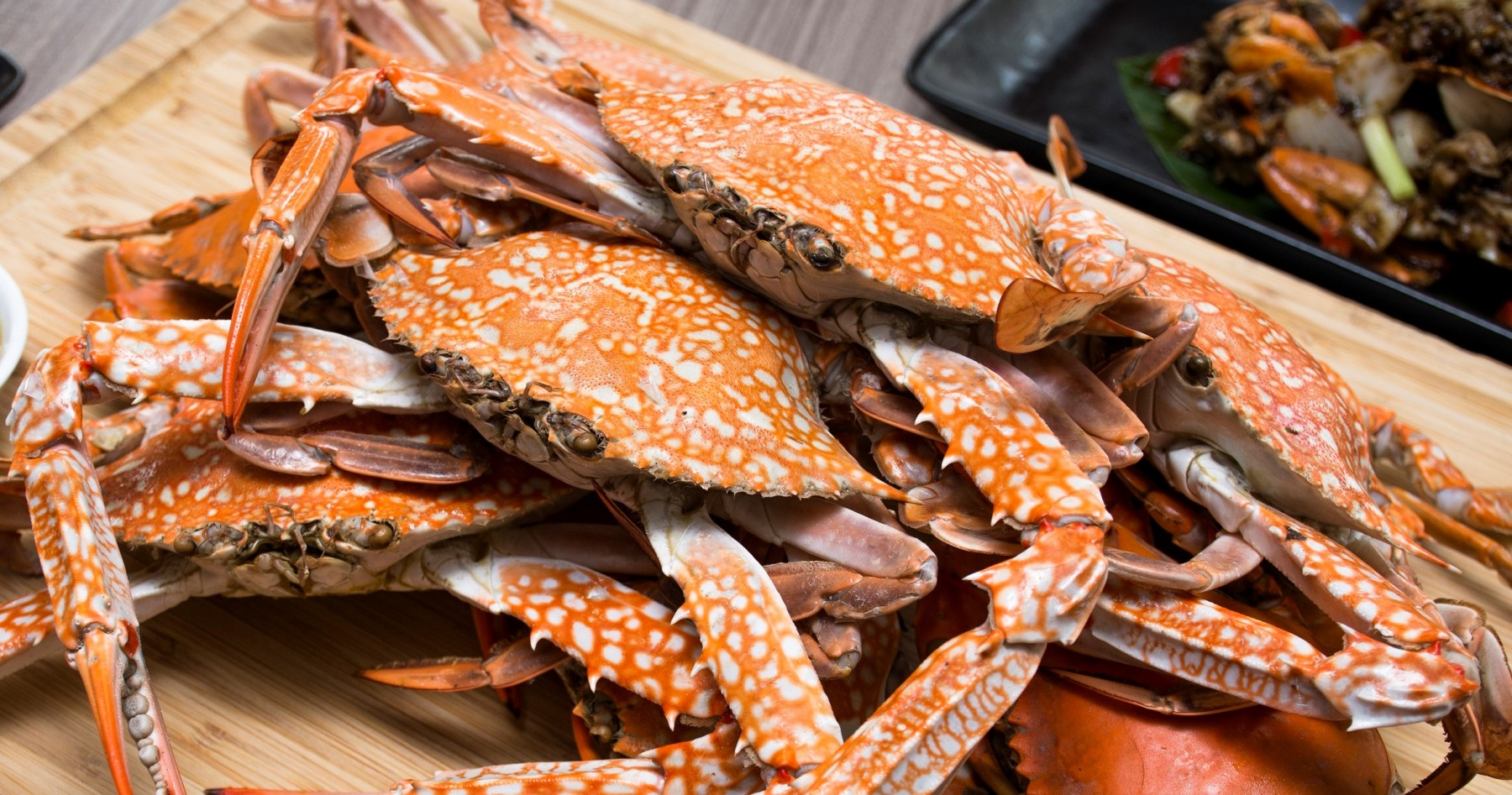 "Crab Buffet Eat To Your Crab S Content: บุฟเฟ่ต์ปูม้า ""All You Can Eat CRAB Vol.2"""