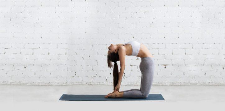 yoga-188x771-pixel-2