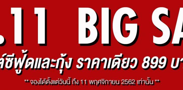 11-11-web-banner-2