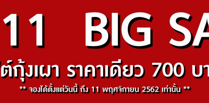 11-11-web-banner-nbsr-2